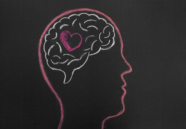 cerebro corazon